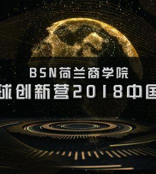 2018BSN荷兰商学院全球创新营中国站
