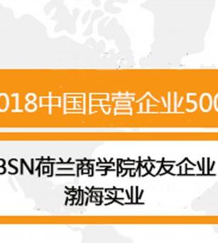 喜讯∣BSN 荷兰商学院校友企业渤海实业荣获中国民营企业500强