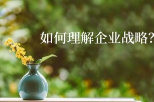 经典重读 | 陈春花:如何理解企业战略?