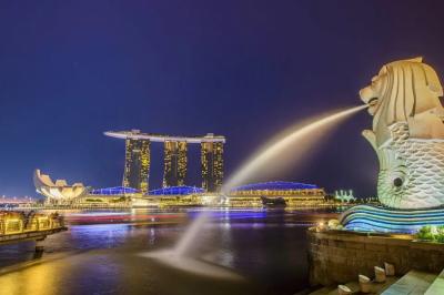 BSN分享|我为何拒绝了新加坡的入籍邀请